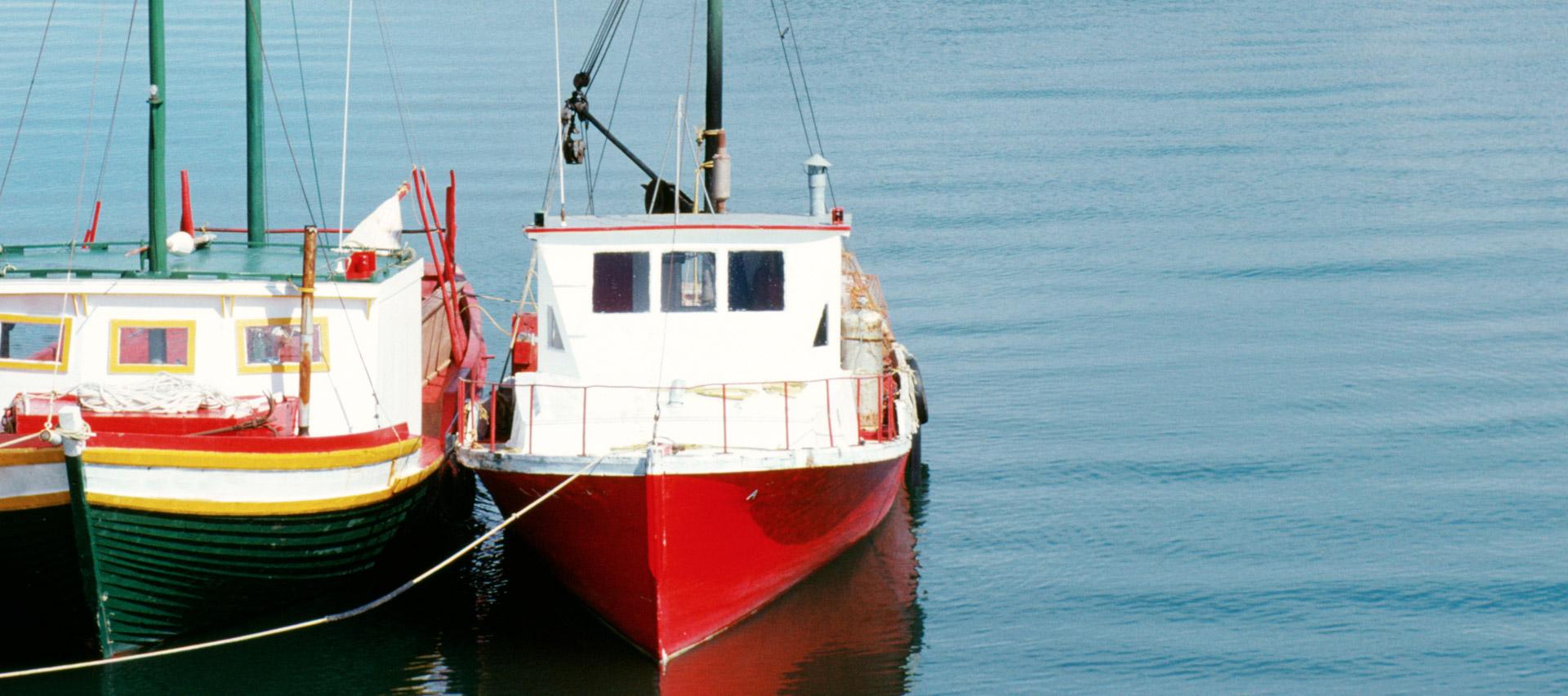 Maber seguro pesca